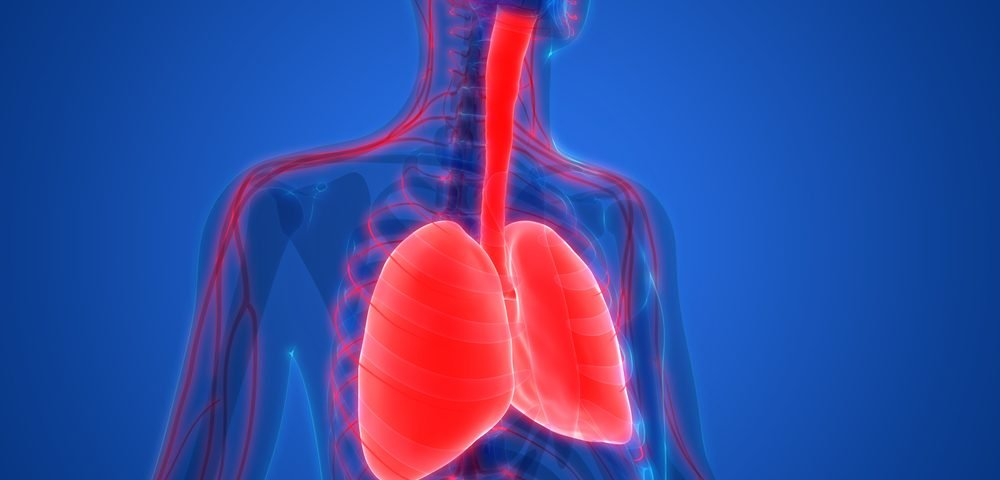 Blood Levels of Distinct Antibodies May Quickly Spot Lung Cancer in LEMS Patients, Study Says